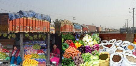 एक वर्षमा १५ खर्ब ३९ अर्बको वस्तु आयात, खाद्यान्नमा मात्रै…